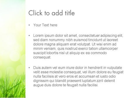 Grass On The Sunshine Rays PowerPoint Template, Slide 3, 13817, Nature & Environment — PoweredTemplate.com