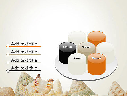 Starfish with Shells PowerPoint Template Slide 12