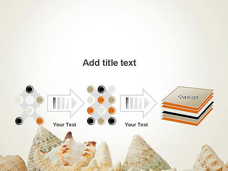 Starfish with Shells PowerPoint Template Slide 9