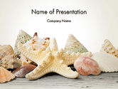 Animals and Pets: Templat PowerPoint Starfish Dengan Kerang #13860