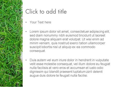 Grass and Concrete PowerPoint Template, Slide 3, 13868, Nature & Environment — PoweredTemplate.com
