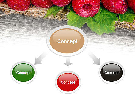 Red Raspberry PowerPoint Template, Slide 4, 13938, Agriculture — PoweredTemplate.com