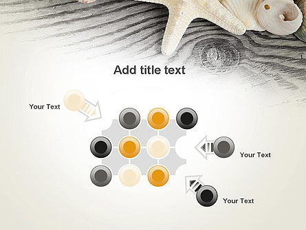 Shells and Starfish PowerPoint Template Slide 10