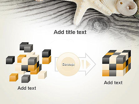 Shells and Starfish PowerPoint Template Slide 17