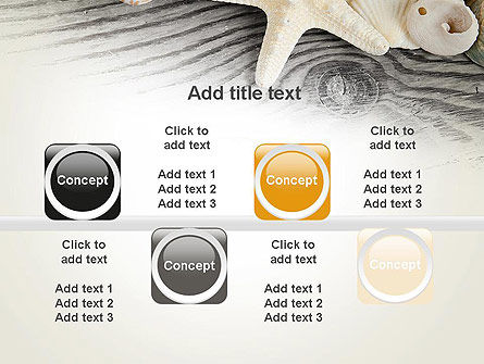 Shells and Starfish PowerPoint Template Slide 18