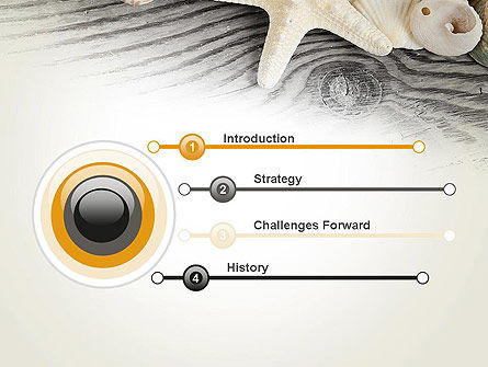 Shells and Starfish PowerPoint Template Slide 3