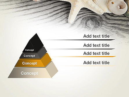 Shells and Starfish PowerPoint Template Slide 4