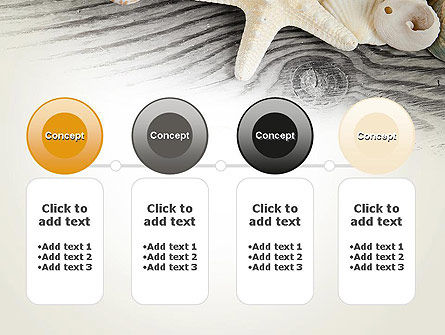 Shells and Starfish PowerPoint Template Slide 5