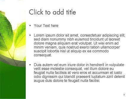Translucent Green Leaf PowerPoint Template, Slide 3, 14108, Nature & Environment — PoweredTemplate.com