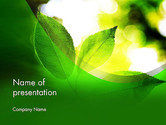 Nature & Environment: Translucent Green Leaf PowerPoint Template #14108