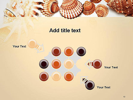Sea Shells and Blank Frame PowerPoint Template Slide 10