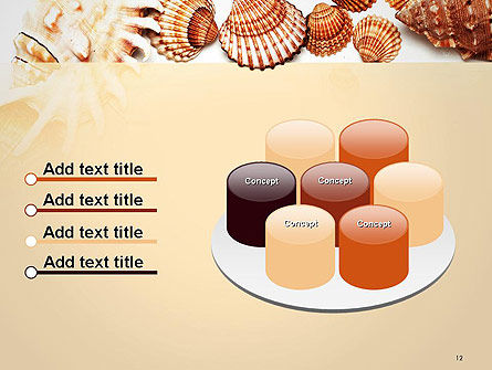 Sea Shells and Blank Frame PowerPoint Template Slide 12