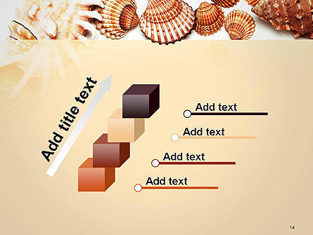 Sea Shells and Blank Frame PowerPoint Template Slide 14