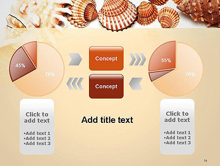 Sea Shells and Blank Frame PowerPoint Template Slide 16