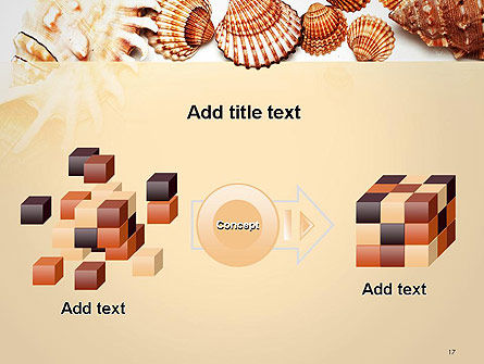 Sea Shells and Blank Frame PowerPoint Template Slide 17
