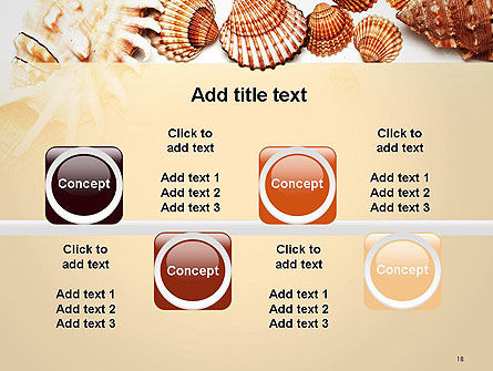 Sea Shells and Blank Frame PowerPoint Template Slide 18