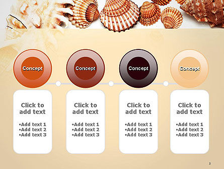 Sea Shells and Blank Frame PowerPoint Template Slide 5