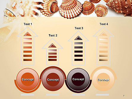 Sea Shells and Blank Frame PowerPoint Template Slide 7