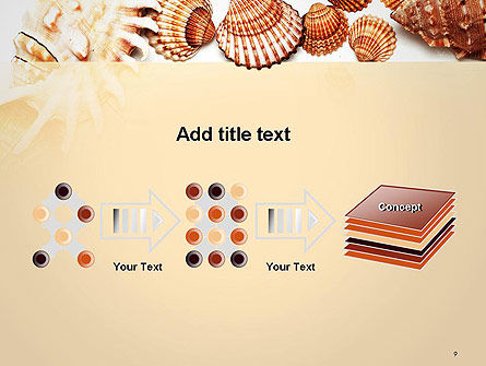 Sea Shells and Blank Frame PowerPoint Template Slide 9