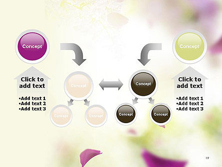 Beauty Parlor PowerPoint Template Slide 19