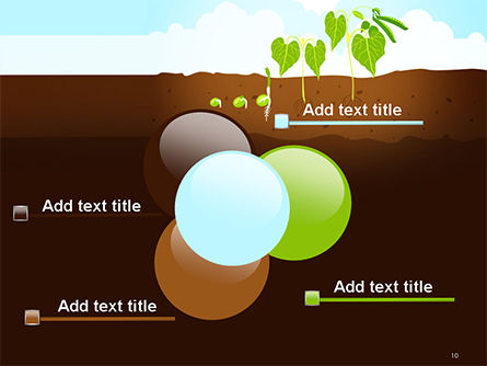 Peas Plant Growth Illustration PowerPoint Template Slide 10