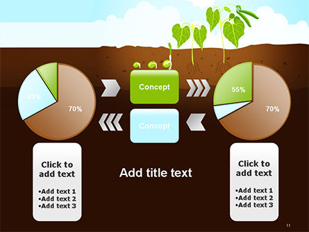 Peas Plant Growth Illustration PowerPoint Template Slide 11