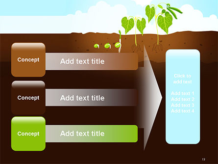 Peas Plant Growth Illustration PowerPoint Template Slide 12