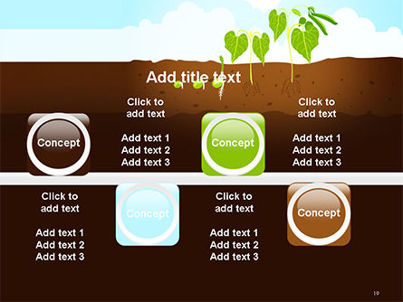 Peas Plant Growth Illustration PowerPoint Template Slide 19