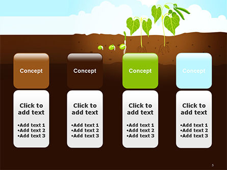 Peas Plant Growth Illustration PowerPoint Template Slide 5