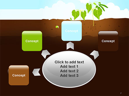 Peas Plant Growth Illustration PowerPoint Template Slide 7