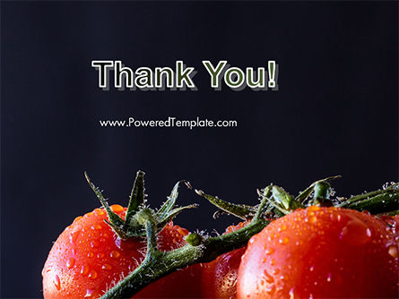 Wet Tomatoes PowerPoint Template Slide 20