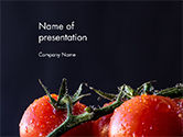 Agriculture: Wet Tomatoes PowerPoint Template #14715