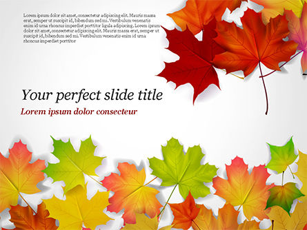 Autumn Maple Leaves PowerPoint Template, 14819, Nature & Environment — PoweredTemplate.com