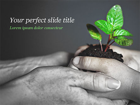 New Life Concept PowerPoint Template, 14881, Business Concepts — PoweredTemplate.com