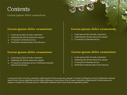 Leaf and Water Drops PowerPoint Template, Slide 2, 15253, Nature & Environment — PoweredTemplate.com