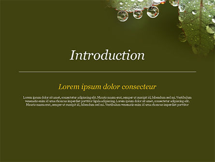 Leaf and Water Drops PowerPoint Template, Slide 3, 15253, Nature & Environment — PoweredTemplate.com