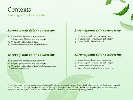 Green Tea Leaves PowerPoint Template, Slide 2, 15273, 3D — PoweredTemplate.com