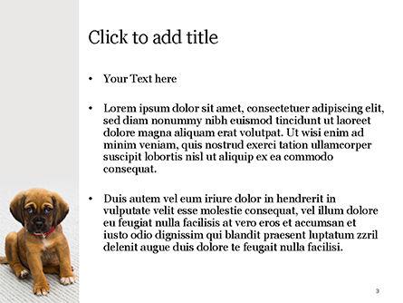 Cute Puppy PowerPoint Template, Slide 3, 15476, Nature & Environment — PoweredTemplate.com