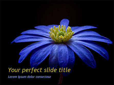 Nature & Environment: Blue Flower PowerPoint Template #15489