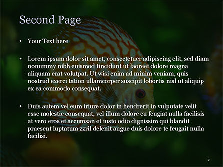Discus Fish PowerPoint Template, Slide 2, 15506, Nature & Environment — PoweredTemplate.com