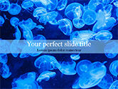 Nature & Environment: Group of Bioluminescent Jellyfish PowerPoint Template #15573