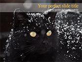 General: Beautiful Black Cat PowerPoint Template #15604