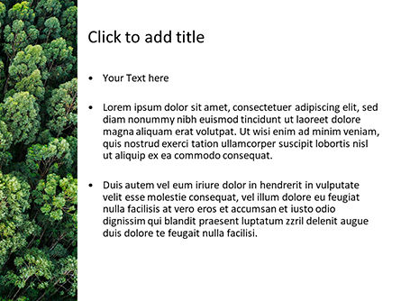 Tropical Rainforest Canopy From Above PowerPoint Template, Slide 3, 15618, Nature & Environment — PoweredTemplate.com
