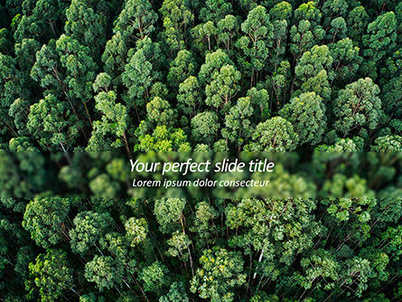 Nature & Environment: Tropical Rainforest Canopy From Above PowerPoint Template #15618