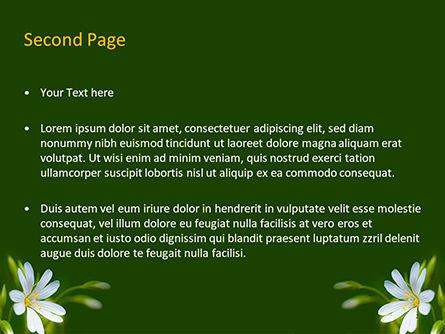 White Flower Close-up PowerPoint Template, Slide 2, 15619, Nature & Environment — PoweredTemplate.com
