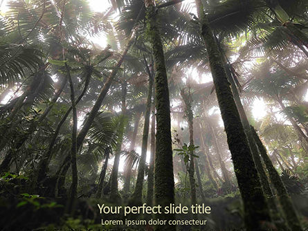 Nature & Environment: Tropical Rainforest PowerPoint Template #15639