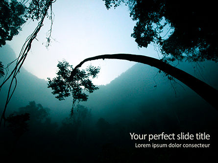 Nature & Environment: Rainforest Sunrise PowerPoint Template #15640