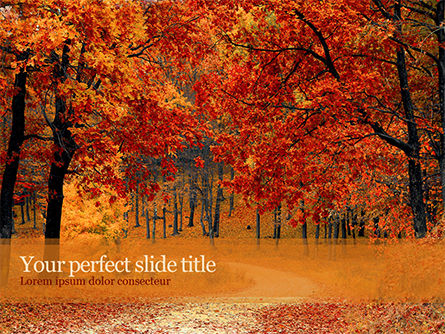Nature & Environment: Beautiful Autumn Forest PowerPoint Template #15660