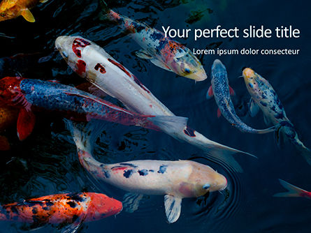 Nature & Environment: Koi Fish PowerPoint Template #15665