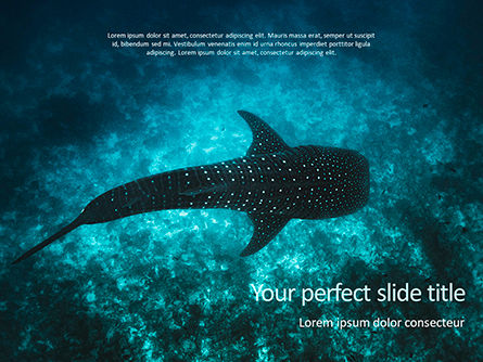 Nature & Environment: Whale Shark PowerPoint Template #15666